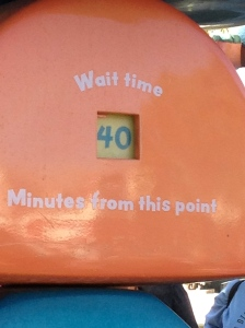 The shortest wait time in the park - 40 minutes for the Gadget's Go Coaster in Toon Town