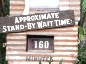 160 minute wait time for Indiana Jones